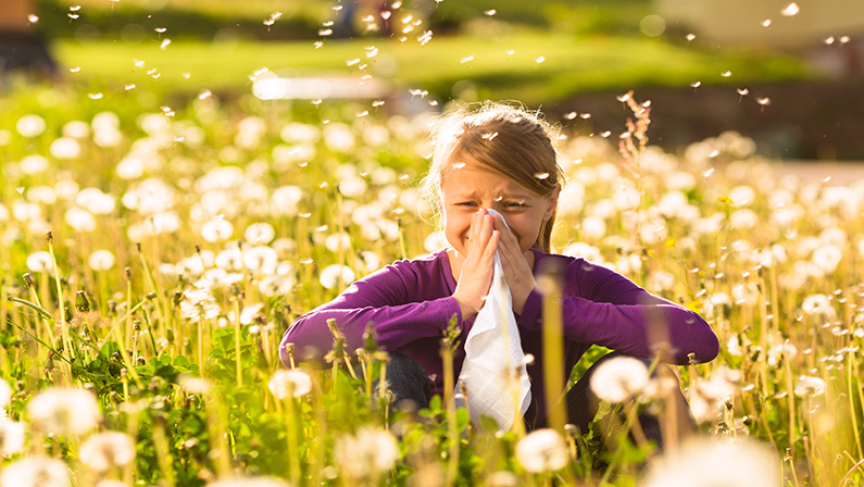 Allergic rhinitis – Allerspray Kids